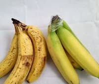 10 - Banane-i-folija 01